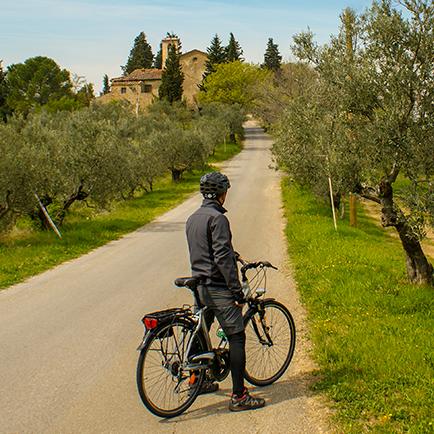 Chianti bike